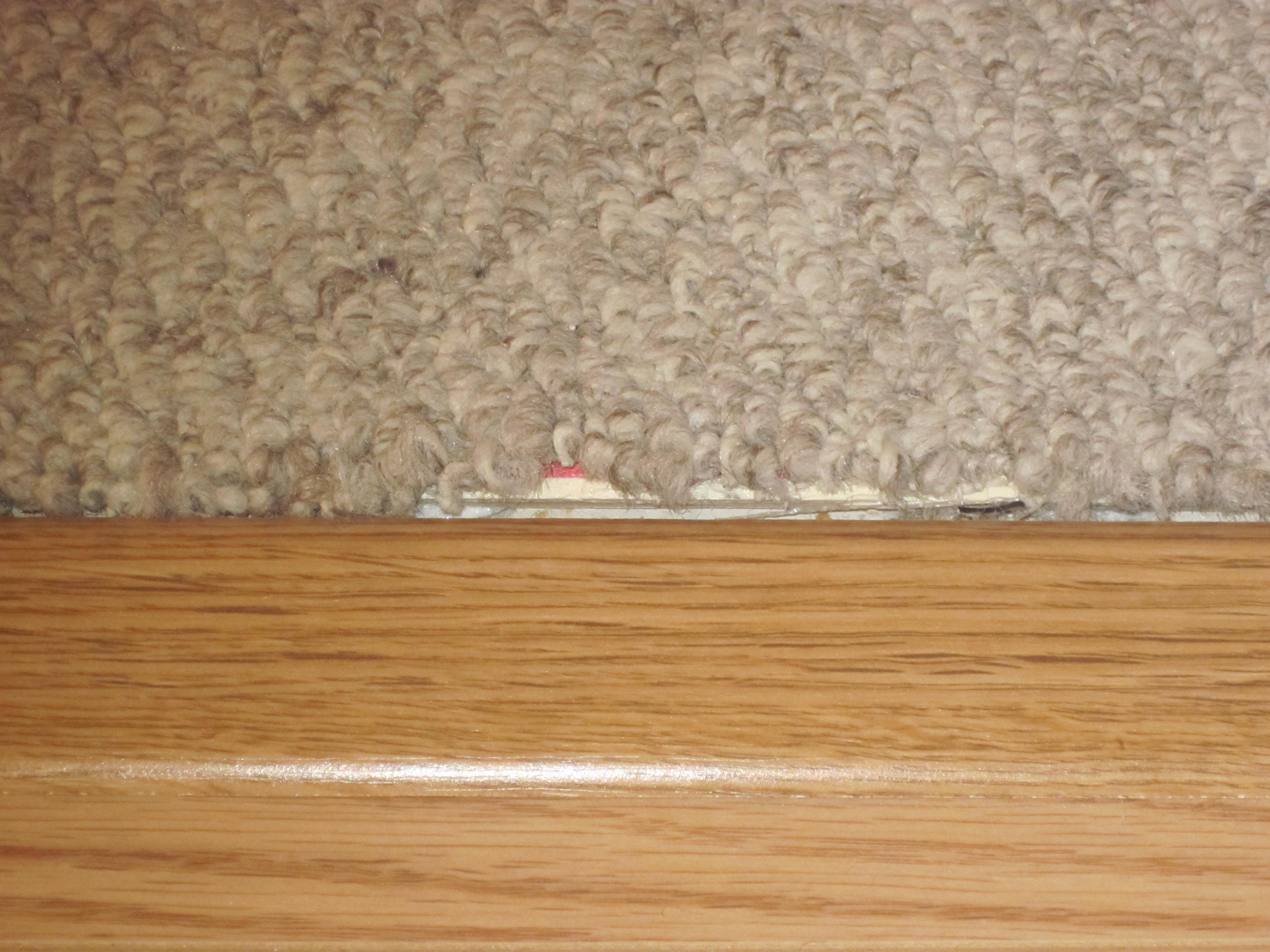 Carpet transition to laminate flooring carpet vidalondon for Laminate flooring carpet
